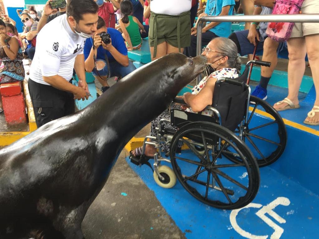 Da Acuario Mazatlán trato preferencial a personas de la tercera edad